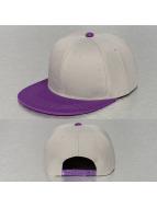 TrueSpin Snapback Caps 2 Tone harmaa