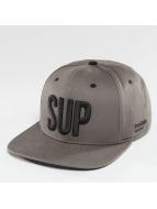 TrueSpin Snapback Caps Shorty SUP harmaa