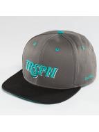 TrueSpin Snapback Caps Team TRSPN harmaa