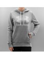 Under Armour Hoodie Favorite Fleece Sportstyle grey