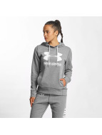 Under Armour Hoody Favorite Fleece Wordmark grau