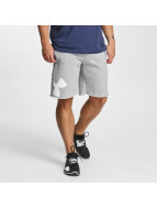 Under Armour Shortsit Rival harmaa