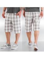 Urban Classics Shorts Checked blanc