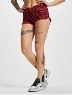 Urban Classics shorts Zebra rood