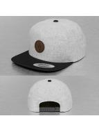Volcom Snapback Caps Quarter Fabric harmaa