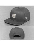 Wemoto snapback cap Flag grijs