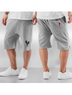 Who Shot Ya? Shorts Basic grau