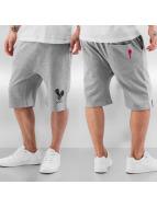 Who Shot Ya? Shorts Basic gris