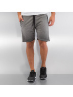 Yezz Shorts Terry Oil grau